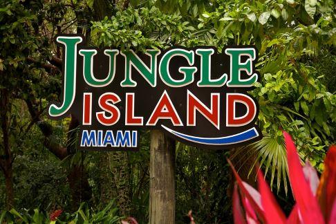 Jungle Island - Superflight